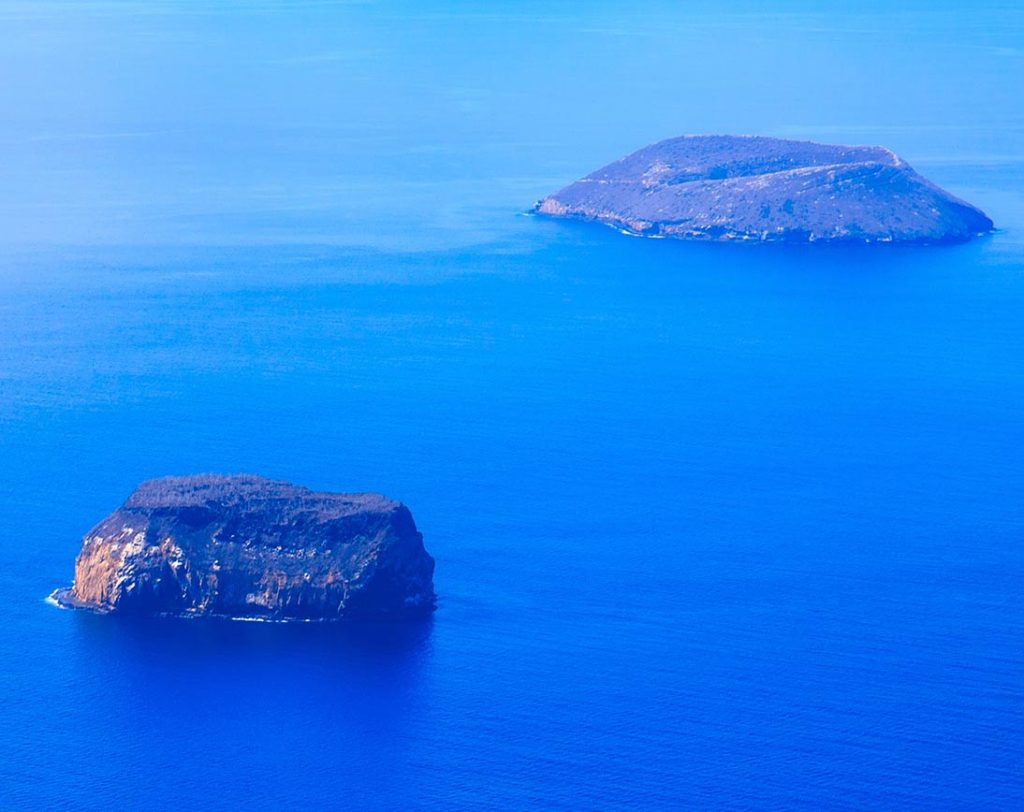 Daphne Mayor Island
