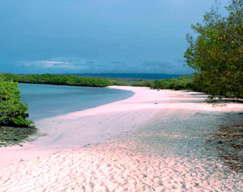 La Pinta Island