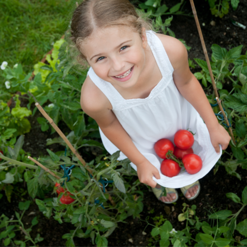 Girl Holding Tomatoes