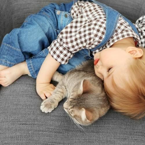 Boy Cuddling Cat
