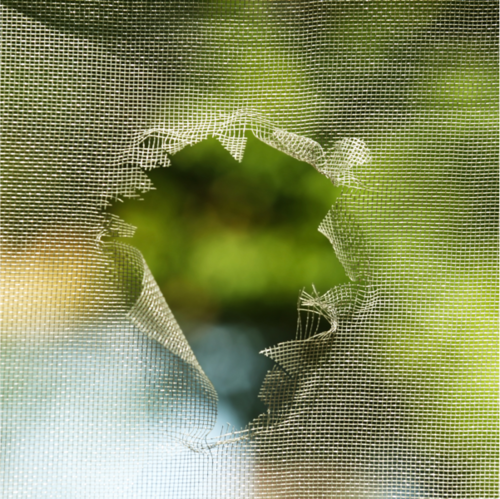 Hole in Screen