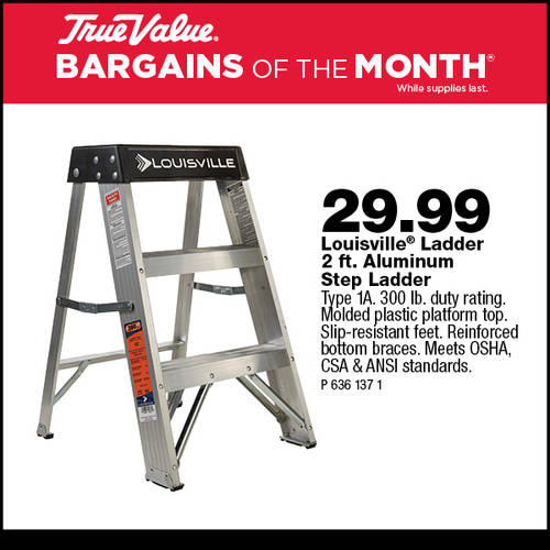 2-ft Aluminum Step Ladder