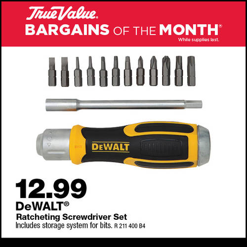 DeWALT Ratcheting Screwdriver Set