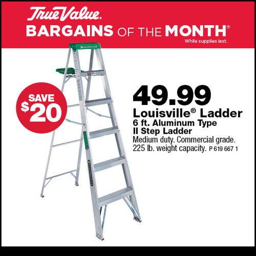 6ft Step Ladder