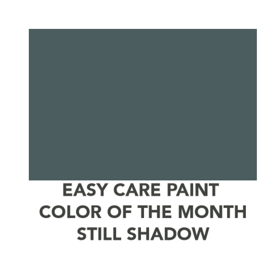 Easy Care  Color of the month of January