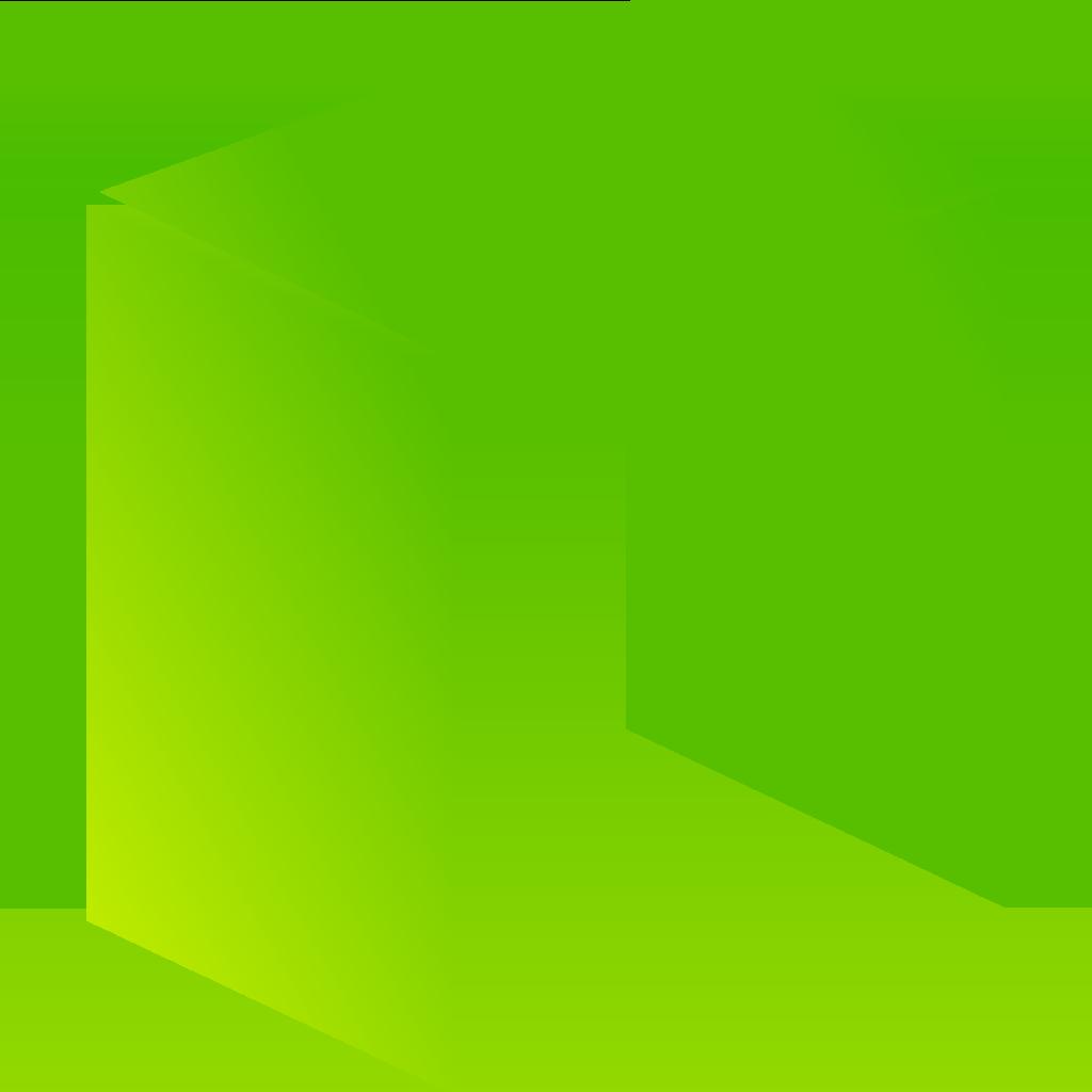 neo 2