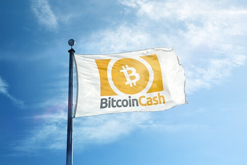 bitcoin cash flying the flag