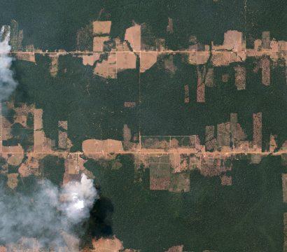 """Fishbone"" deforestation patterns In the Amazon rainforest near Porto Velho, Brazil © 2016, Planet Labs Inc. All Rights Reserved."