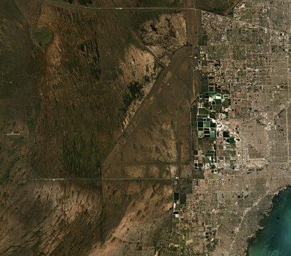 Planet mosaic of Miami, Florida