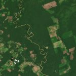 In the Colombian Amazon, PlanetScope imagery shows changes in forest cover in and around Chiribiquete National Park. © 2021, Planet Labs Inc. All Rights Reserved.