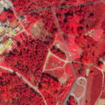 This false-color (near infrared, red, and green) SkySat image collected on March 3, 2021, shows the state of vegetation surrounding distribution lines near Campo, Portugal. Four-band imagery helps provide needed information on vegetation health & vigor. © 2021, Planet Labs Inc. All Rights Reserved.
