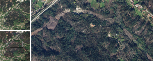 Overstory AI uses PlanetScope's frequent coverage to monitor the timing of changes in vegetation near power lines, and SkySat's high resolution to determine the precise condition of the right of way. © 2021, Planet Labs Inc. All Rights Reserved.