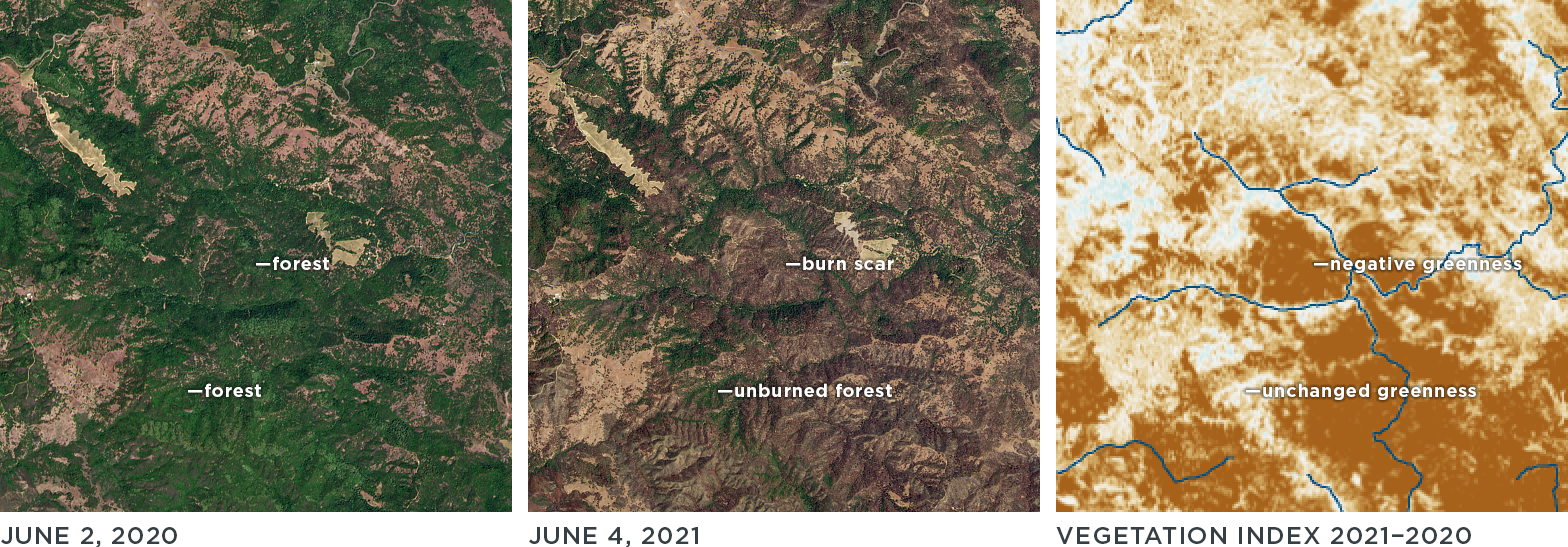Forests and woodlands burned by the Wallbridge fire showed a large decrease in greenness between 2021 and 2020. © 2021, Planet Labs Inc. All Rights Reserved.