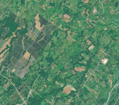 PlanetScope capture of a pineapple field in Limón, Costa Rica. © 2019, Planet Labs Inc. All Rights Reserved.