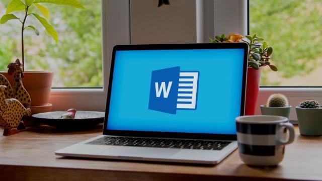 Microsoft Word versioni 2013 e 2016: il corso Fondamentale