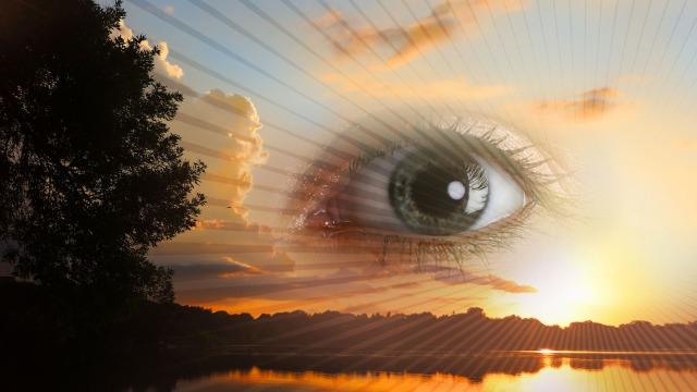 """Il Potere della Visione: come attivare il tuo """"terzo occhio"""" e liberare l'intelligenza intuitiva in 21 giorni"""