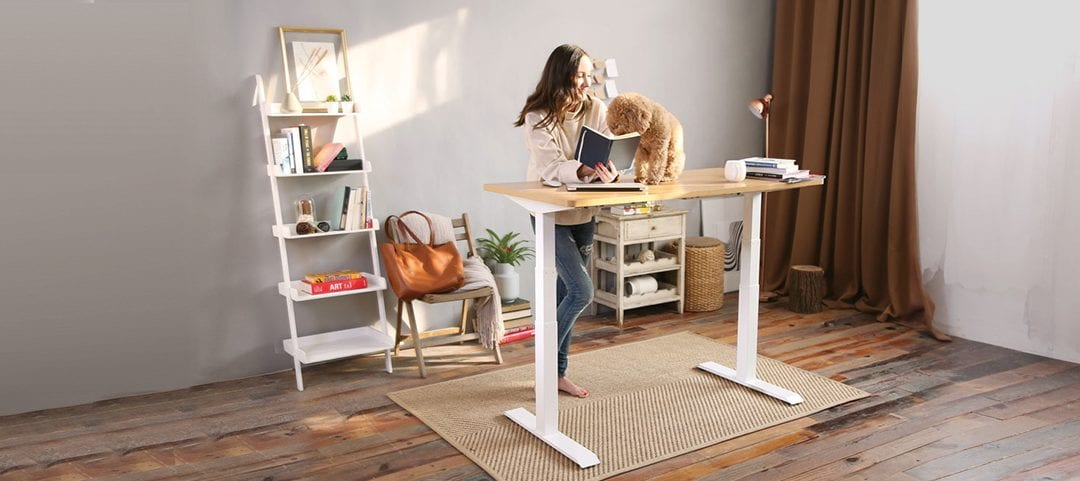 Tips to have your Flexispot desk at the best price