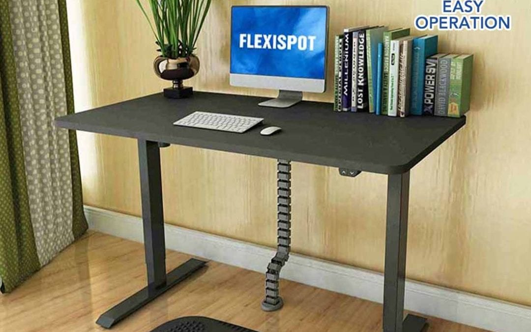 Differences between Single motor vs Dual motor Flexispot standing desk