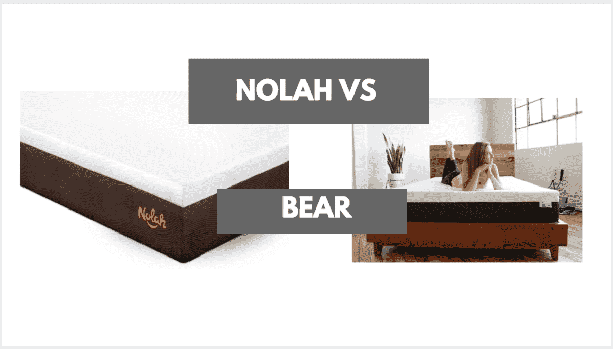 Nolah vs Bear mattress