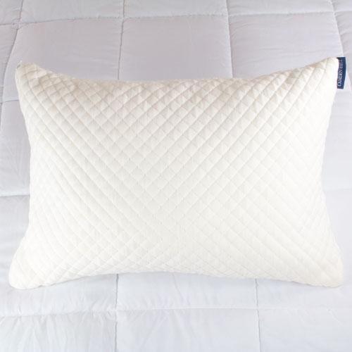 Sleep Ez pillow reviews