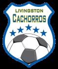 Livingston Cachorros Soccer Club