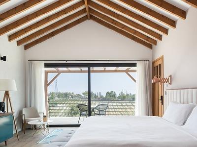 Double Deluxe Suite (SeaView, Balcony Or Terrace)