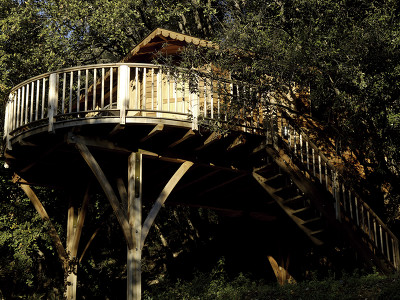 Treehouse Bagheera