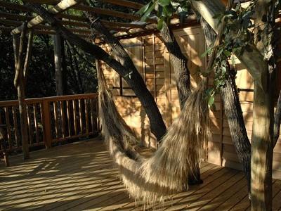 Treehouse Shere Khan