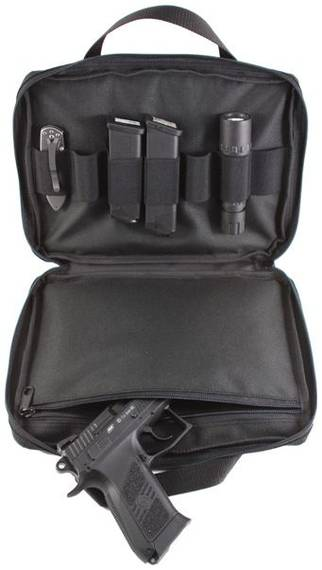 Case for Gun and Magazines