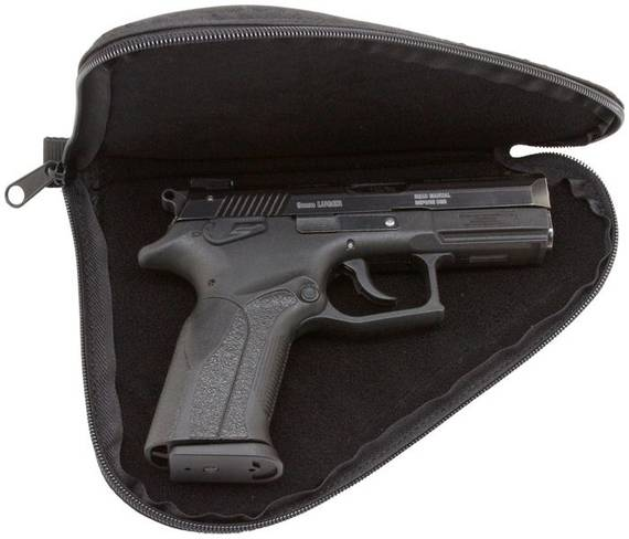 Soft Case For a Gun