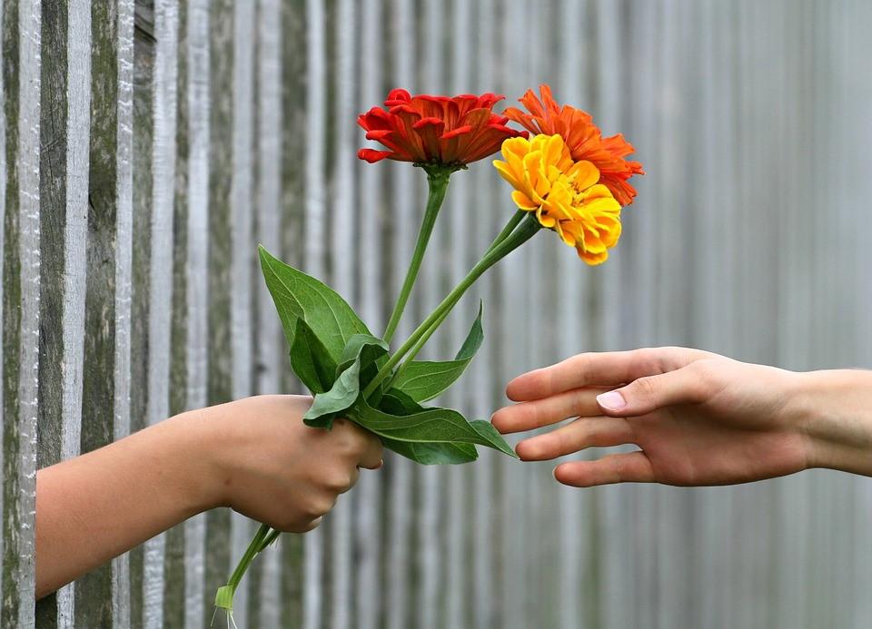 Entregando flores