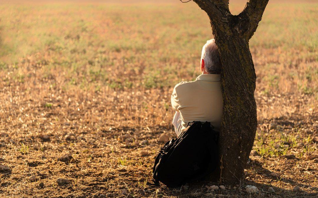 El mindfulness y el amor compasivo de Pema Chödron