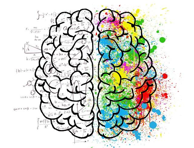 Мозг и ум психология