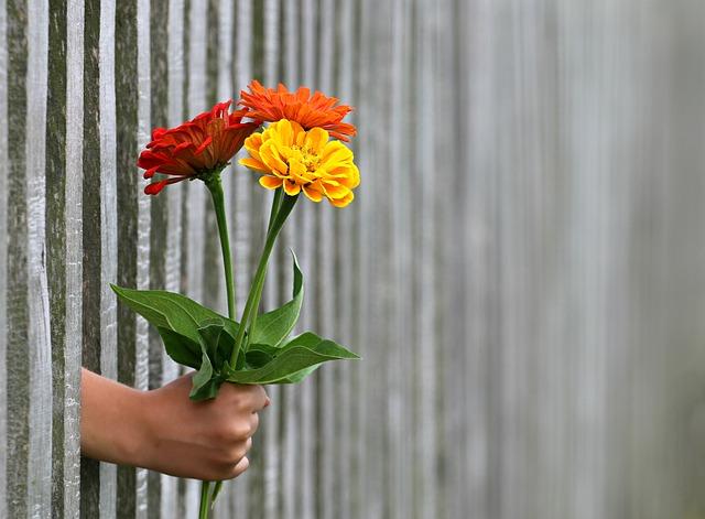 Flores con empatía
