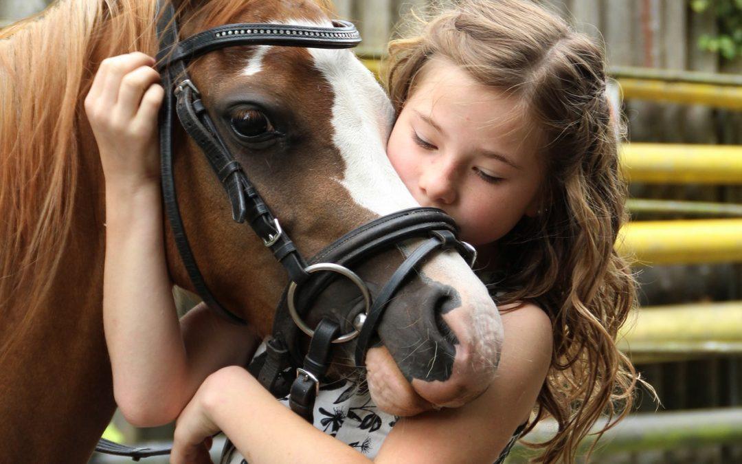 Terapias con mascotas que generan bienestar