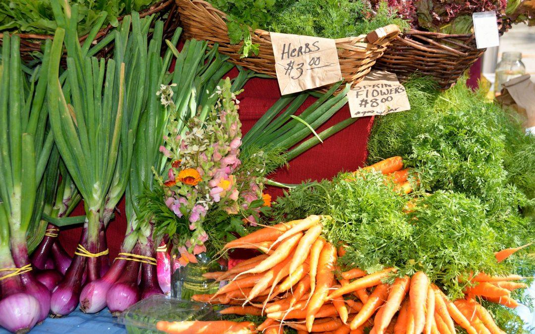 La sostenibilidad y la alimentación: ¿cómo se complementan?