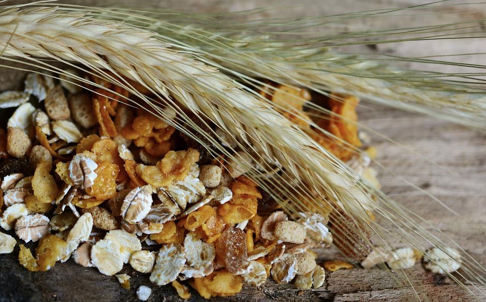 Alimentos integrales: ¿más saludables? ¡Te contamos por qué!