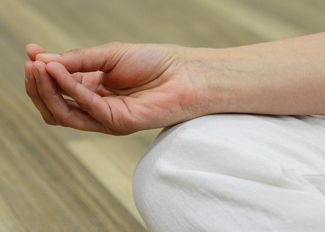 Meditación y estudios