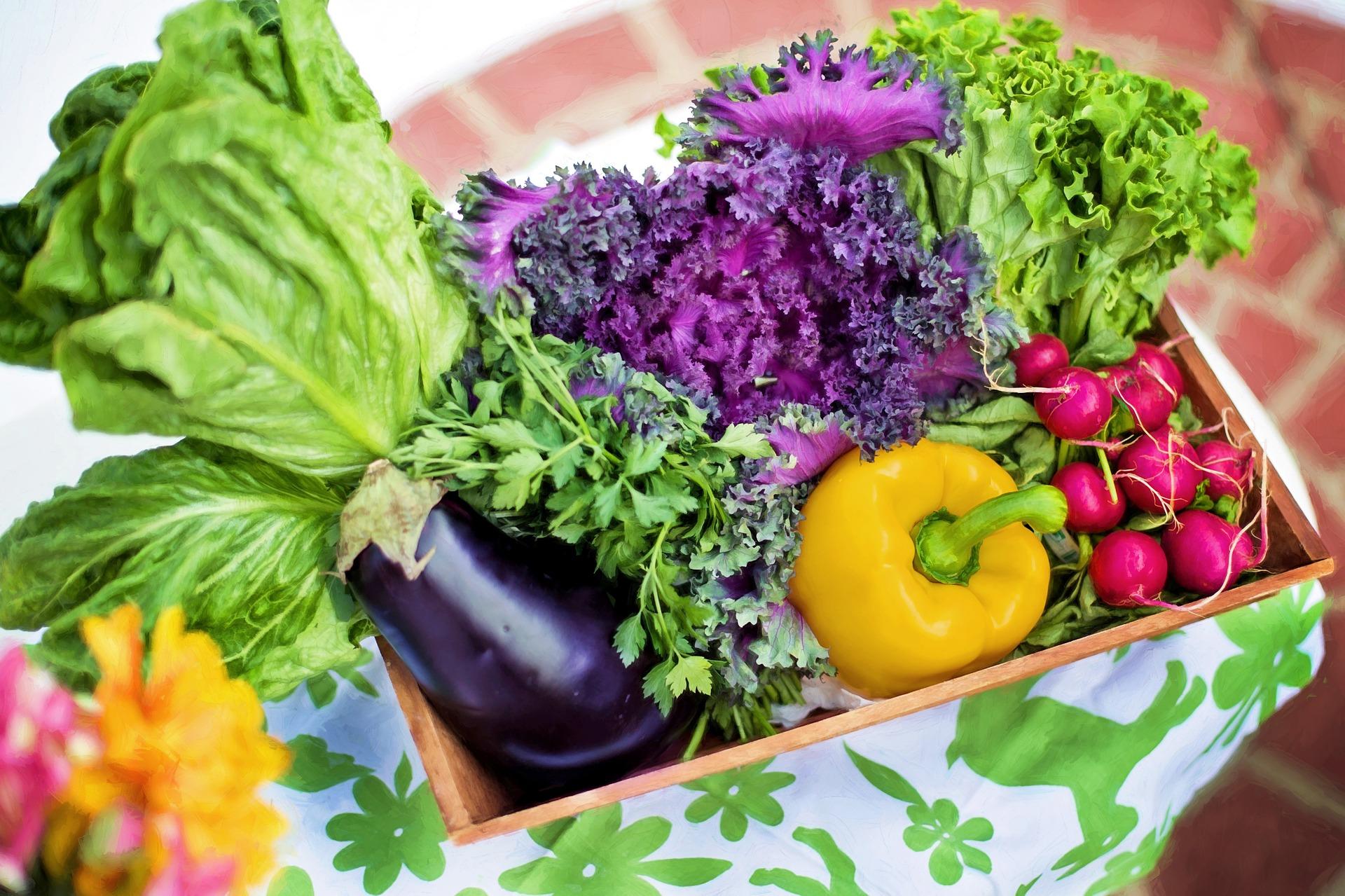 ¿Por qué las hortalizas tenían más nutrientes hace 50 años?