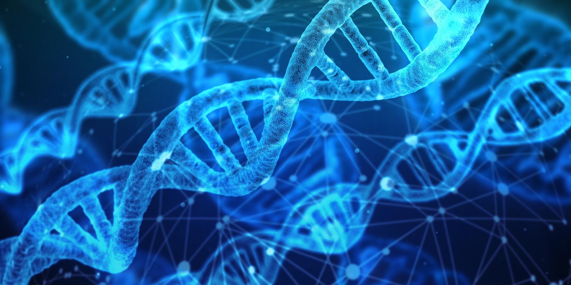 Qué es la epigenética y qué beneficios aporta