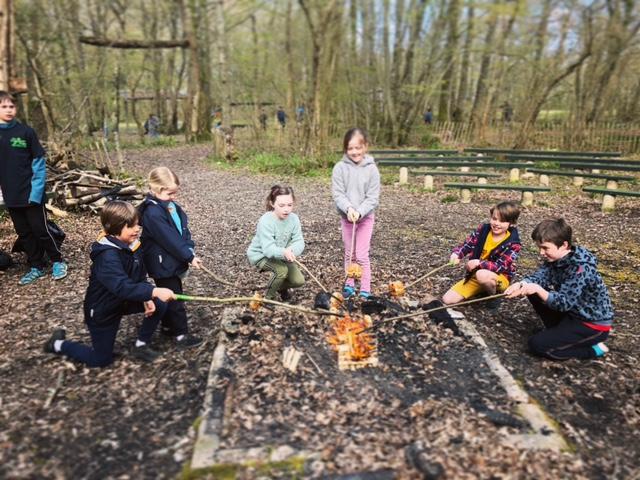 Our Parkwood Scout Camp Venue