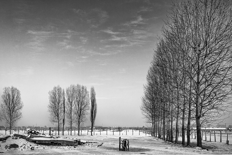 Looking back, Auschwitz II – Birkenau