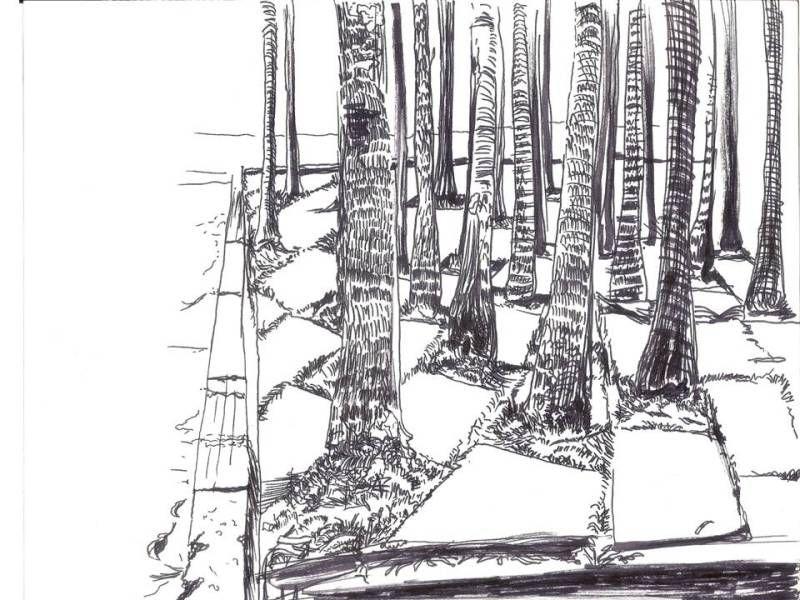 Mario Perez Tierra de Nadie 5 (Fecha 2006- Lu00E1piz sobre papel- 20 cm x 26 cm)