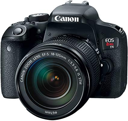 Best Beginner DSLR Canon EOS Rebel SL2 DSLR Camera
