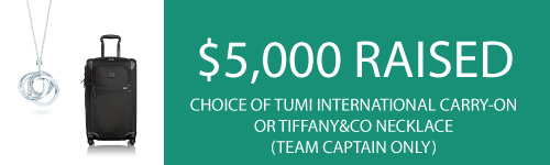 Tiffany-or-Tumi-Team-Prize2-500x150