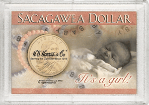 Its a Girl! Sacagawea HE Harris 2x3 Frosty Case 2x3 Its a Girl! Sacagawea HE Harris 2x3 Frosty Case, HE Harris & Co, 1653
