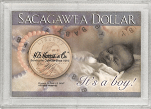 Its a Boy! Sacagawea HE Harris 2x3 Frosty Case 2x3 Its a Boy! Sacagawea HE Harris 2x3 Frosty Case, HE Harris & Co, 1652
