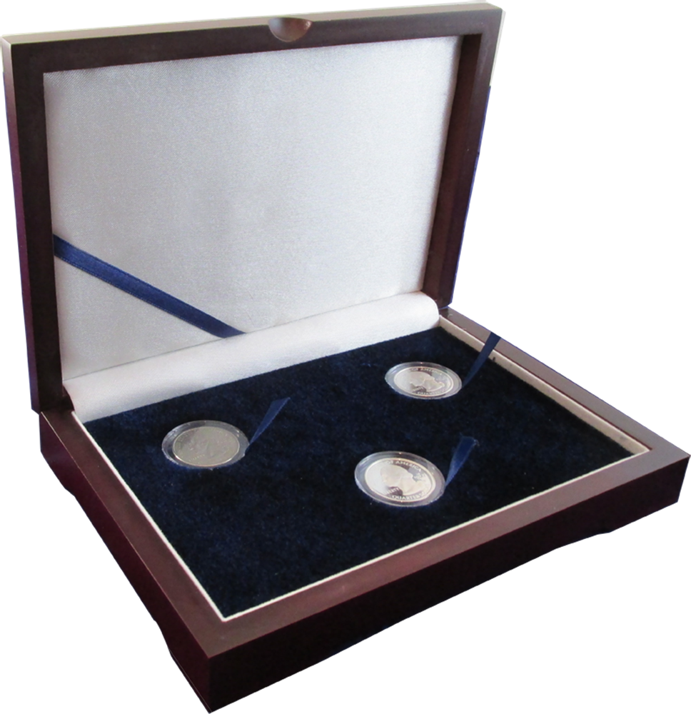 Solid Wood Top Coin Capsule Display Box ( 3 S ) - Dark Mahogany