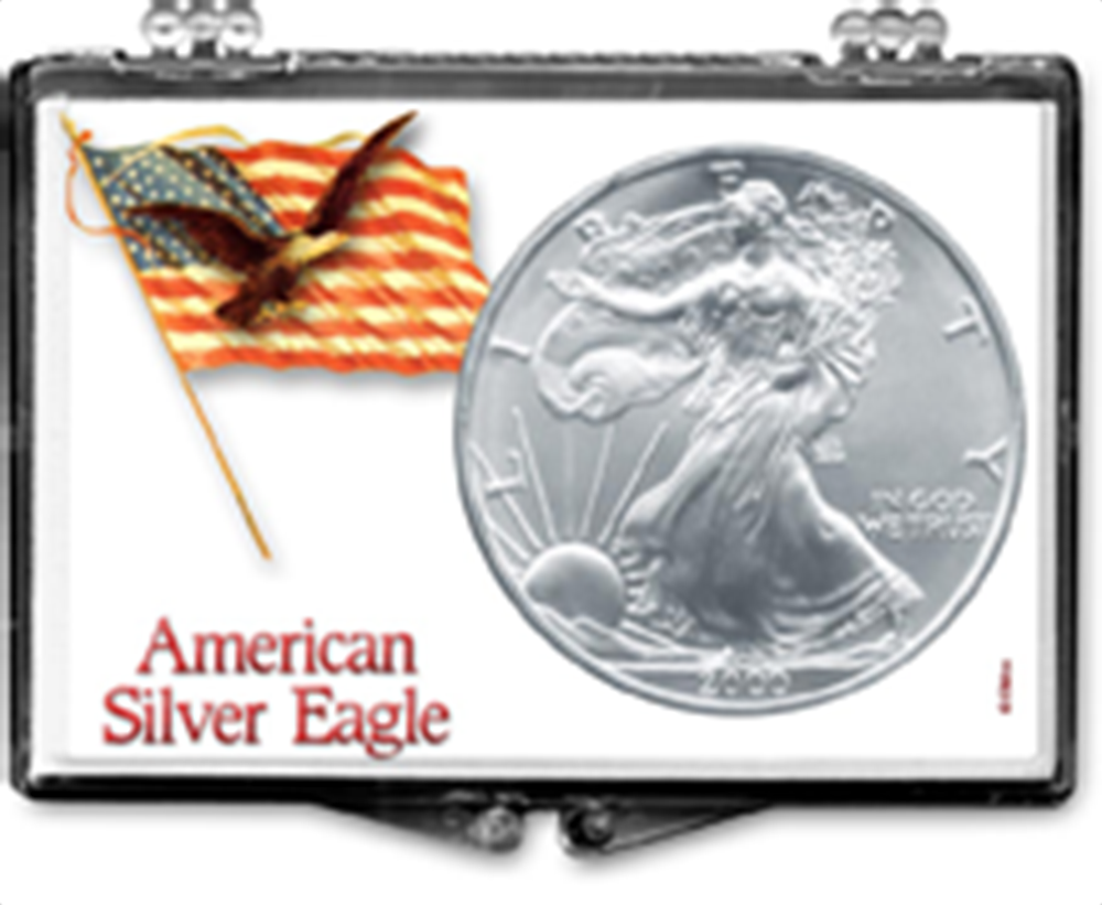 Flag on Pole with Eagle-American Silver Eagle Flag on Pole with Eagle-American Silver Eagle, SN204