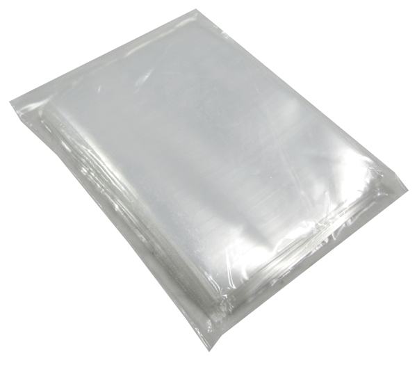 Graded Coin Slab Bag - Protector